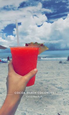 Bucket List Life, Cocoa Beach, Coconut, Summer, Places, Summer Time