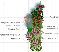 цветники из многолетников своими руками схемы: 10 тыс изображений найдено в Яндекс.Картинках