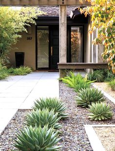 Low Water Landscaping, Small Front Yard Landscaping, Landscaping With Rocks, Modern Landscaping, Landscaping Ideas, Garden Landscaping, Backyard Ideas, Outdoor Ideas, Succulent Landscaping