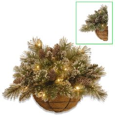 Glittery Bristle Pine Wall Basket with 15 Warm White Battery Operated LED Lights