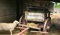 Midwest Farmer 1800s | Working Farms