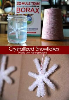 SCIENCE  Crystallized Snowflakes Craft using Borax and Pipe Cleaners