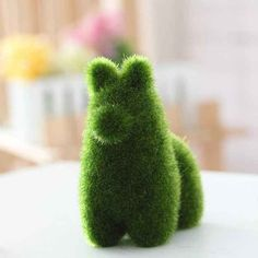 This fuzzy plant animal that's almost as good as a real pet that doesn't require any care.