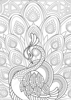 Paon Zentangle avec ornement Coloriage