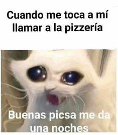 Cute Memes, Really Funny Memes, Stupid Funny Memes, Funny Relatable Memes, Funny Animal Pictures, Funny Images, Funny Photos, Funny Spanish Memes, Spanish Humor