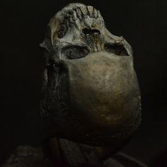 Anillo de calavera mediados tamaño mandíbula por Bakogiorgis