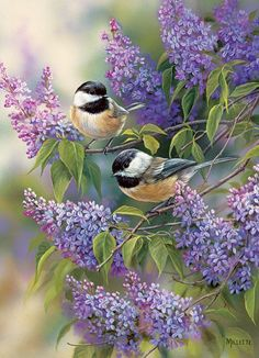 """Chickadees and Lilacs"""""""" 1000 Piece Puzzle"""