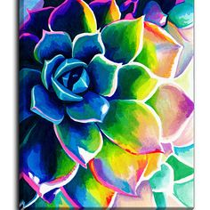 Canvas Wall Art by DiaNoche Designs, Supp Succulent