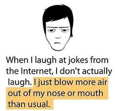 When I laugh at jokes on the internet, I don't...