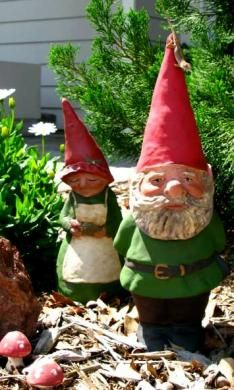 Still have'nt made up my mind wheather I like gnomes yet, although I loved the movie about them!