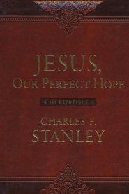 Imitation Leather Book Christian Books Jesus Perspective On Life