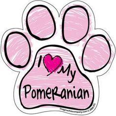 I Love My #pomeranian PINK Scribble Paw Magnet