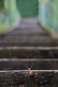 One step at a time...