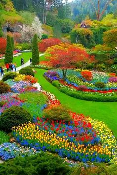 Beautiful pictures Cancer Chat is part of Most beautiful gardens - Beautiful Nature Pictures, Beautiful Nature Wallpaper, Amazing Nature, Beautiful Landscapes, Most Beautiful Gardens, Beautiful Flowers Garden, Amazing Gardens, Diy Flowers, Dream Garden