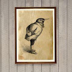 Blackbird poster Retro home decor Bird print AK894 by artkurka
