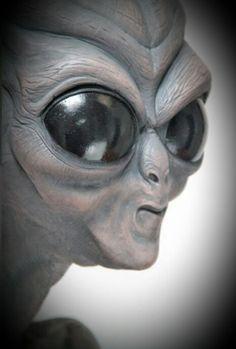 Aliens And Ufos, Ancient Aliens, Alien Creatures, Mythical Creatures, Alien Aesthetic, Grey Alien, Alien Concept, Psy Art, Alien Races