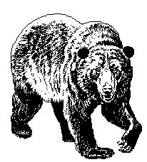 Bear FAQ for the Pacific Crest Trail