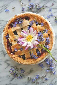 You searched for Olallieberry Hibiscus Pie ~ Deco Tartelette Pie Dessert, Dessert Recipes, Hibiscus Recipe, Pie Crust Designs, Mousse, Berry Pie, Flower Food, Cactus Flower, Sweet Pie