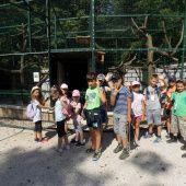 Rok 2019 - Denný letný tábor 2019 - Oficiálné stránky obce Jaslovské Bohunice Basketball Court, Street View