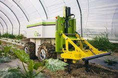 Le robot de désherbage automatisé déjà en application dans + de 20 exploitations maraîchères