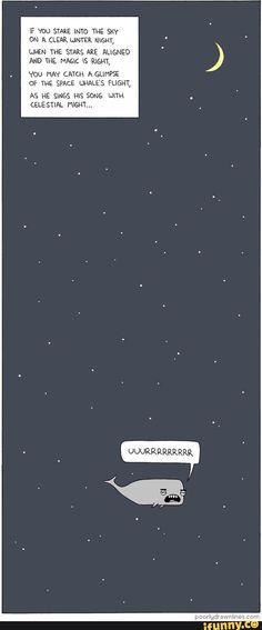 starry, night