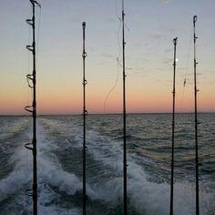 Sunrise #fishing
