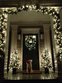 Cute little doggie is welcoming you to his house. Great holiday decorations.