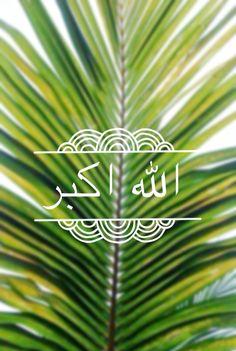 #الله_اكبر #الله #God ♡ Allah Calligraphy, Cool Words, Islamic, Plant Leaves, Faith, Nice, Quotes, Plants, Quotations