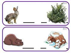 Rabbit, Animals, Album, Group, Animales, Rabbits, Animaux, Animal, Animais
