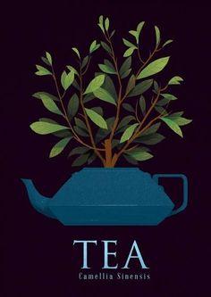 Tea - Camellia Sinensis Art Print by Monstertree - X-Small Cuadros Diy, Tea Illustration, Tea Plant, Tea Quotes, Cuppa Tea, Chai, My Cup Of Tea, Jolie Photo, Camellia