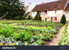 Kitchen Garden Inspiring Garden Vegetable Near Old France Cottage Stock