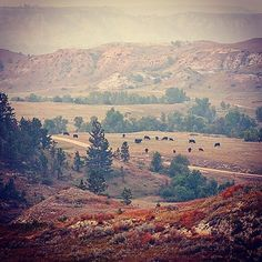 Smoke from the west gave the badlands a Renaissance feel late in the summer in #northdakota #beautifulbakken #mykuhlsphotography #badlands #hike #camp #explore #discover http://ift.tt/1J6Nfso