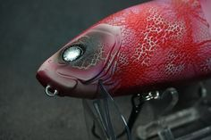 Today let`s see the limited edition lures from each brands for THE KEEP CAST 2017 NAGOYA. JACLKALL GIGANTAREL RT specimen of piranha in transparent body  3D real print specimen of piranha is in transparent body. It has crystal eyes.  Not only for decoration, it`s also good for use. GAVACHO FROG LAMELAME GOLD SHACHI It has gold color which is inspirated from decoration of Nagoya catsle. It reflects the light for any directions strongly. The head part has pink color which is sym...