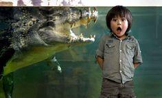 Ce petit garçon est impressionné par ce crocodile de cinq mètres de long.