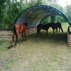 """""""Abri Tunnel demi lune largeur 6 metres, Abris de jardin Tunnel en Abris demi lune"""" I think it also helps against wet muddy small passages between pastures Horse Paddock, Horse Stables, Horse Farms, Horse Shelter, Animal Shelter, Horse Barn Plans, Horse Ranch, Horse Property, Dream Barn"""