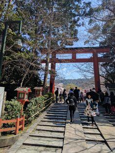 Torii Gate  Kyoto, Japan