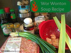 holymamamoly: TastyTuesday - Wor Wonton Soup Recipe