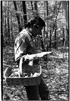 John Cage picking mushrooms