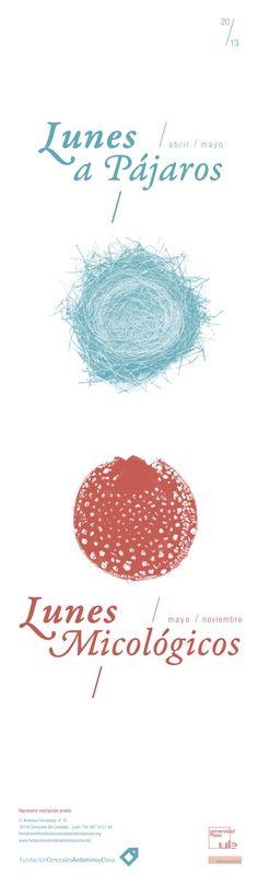 Mycology Mondays: http://fundacioncerezalesantoninoycinia.org/node/863 Bird Mondays: http://fundacioncerezalesantoninoycinia.org/node/864