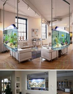 Cool living room with fish tanks
