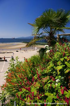 English Bay and Third Beach, Stanley Park, Vancouver, British Columbia, Canada