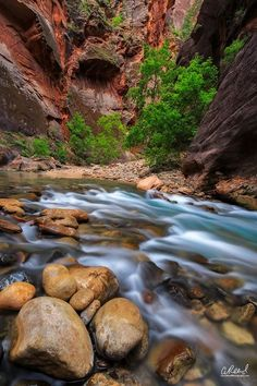 The Neverending Story  Zion National Park #homeandcandle #homeandgarden #design #homedecor #inspire #comfort #athome #decorate