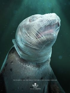 Sea Amazing New Campaign Shows the Impact of Plastic on Marine Life Sea Shepherd, in partnership with Tribal Worldwide Paulo and DDB Guatemala, created a art awareness campaign to demonstrate the harmful impact of plastic on marine wildlife. Save Planet Earth, Save Our Earth, Save The Planet, Ocean Pollution, Plastic Pollution, Save Mother Earth, Sea Shepherd, Save Our Oceans, Sea Birds