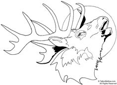 Tule Elk Deer coloring page from Elk category. Description from pinterest.com. I searched for this on bing.com/images