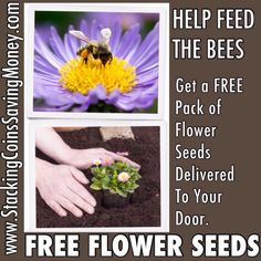 FREE PLANT SEEDS 2015 - Grow Flowers To Feed A Bee - Bayers Bee Health Campaign - STACKING COINS SAVING MONEY [SCSM]