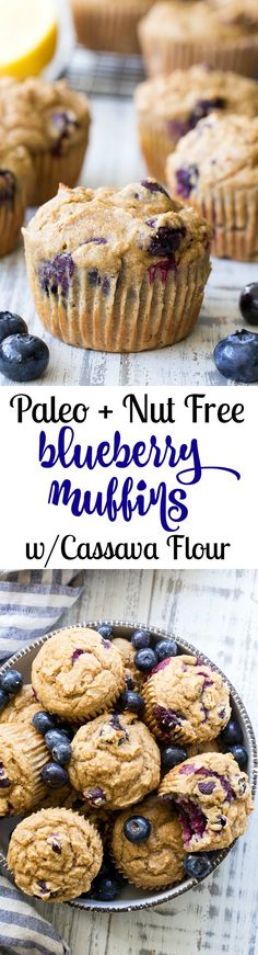 These classic blueberry muffins have a hearty and moist texture thanks to cassava flour and are bursting with flavor and juicy blueberries! They're grain free, nut free, dairy free and paleo, family approved, and great for breakfasts and snacks! Paleo Blueberry Muffins, Blue Berry Muffins, Nut Free, Grain Free, Dairy Free, Gluten Free, Paleo Sweets, Paleo Dessert, Paleo Baking
