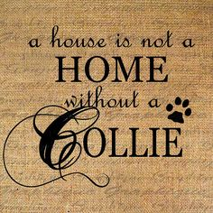 HOME wo COLLIE Text Word Calligraphy Digital Image by Graphique, $1.00