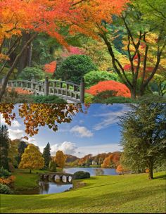 Stourhead garden, wiltshire, england, wiltshire, england, lake, bridge, autumn, trees, park