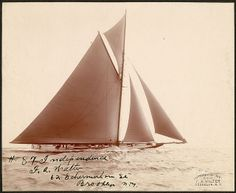 Independence in America's Cup Race by F.A. Walter, 1901 (LOC)