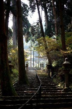 Approach to Hiei-zan Enryaku-ji temple, Shiga, Japan 比叡山延暦寺
